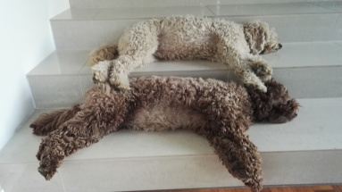 Same position :)