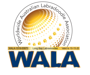 WALA member