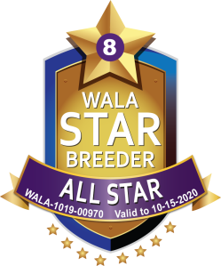 WALA All Star Breeder