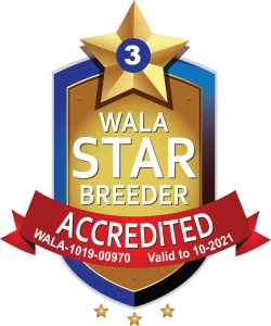 WALA Start Breeder